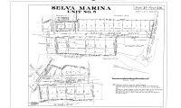 Selva Marina No 5 (30-029)